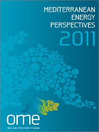 MEP 2011