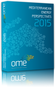 covermep2015perspective_resize