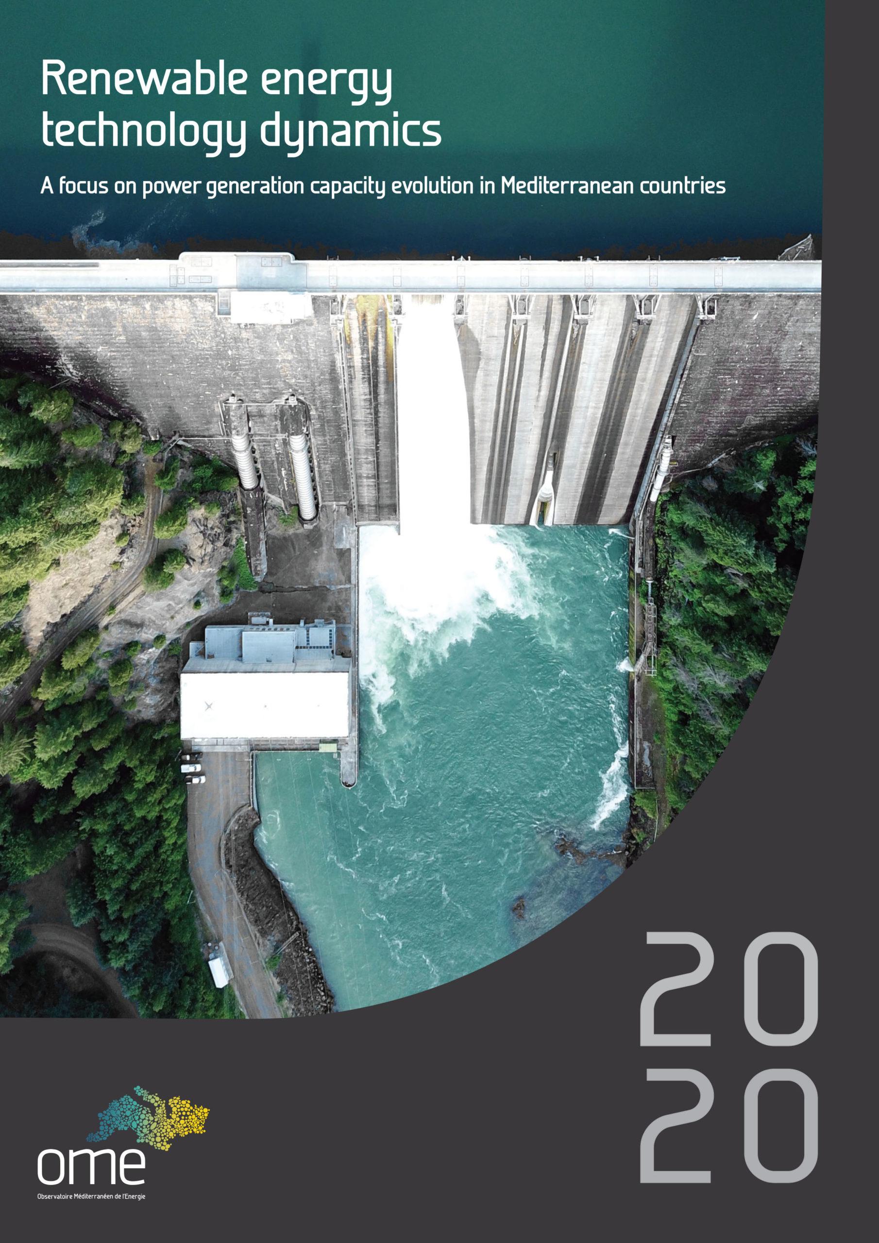 Renewable energy technology dynamics, 2020