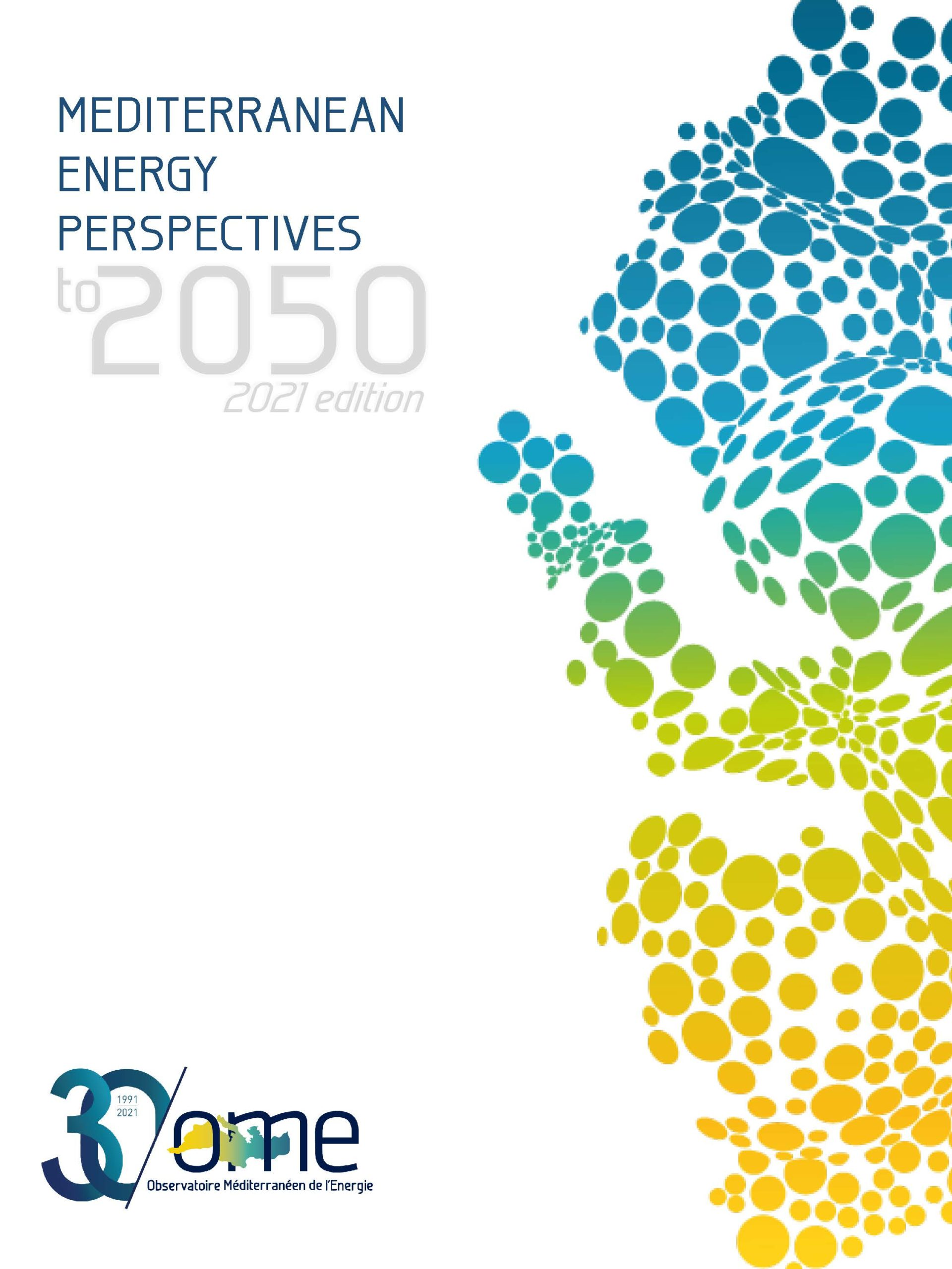 MEPto2050 – 2021 edition (to be released in June 2021)